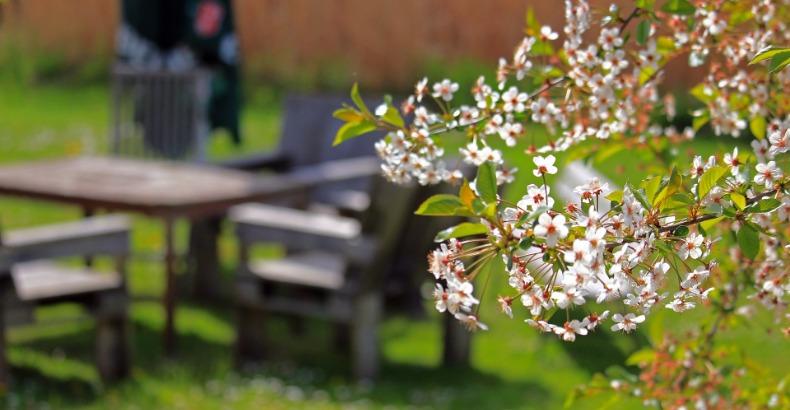 Maak de tuin van jouw recreatiewoning klaar voor de zomer!