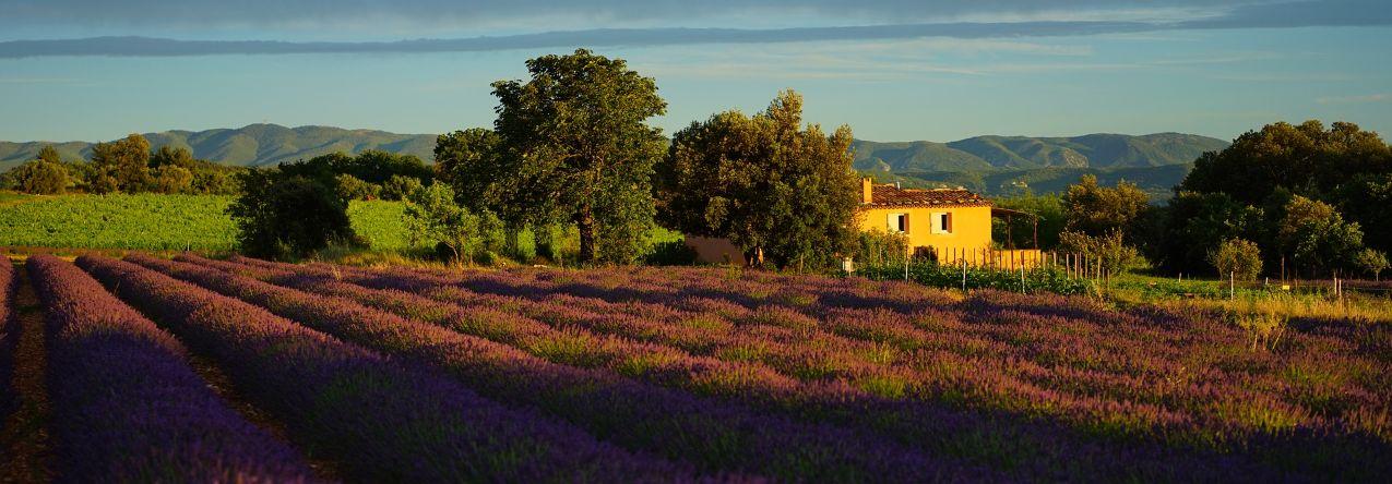 Provence/Côte d'Azur