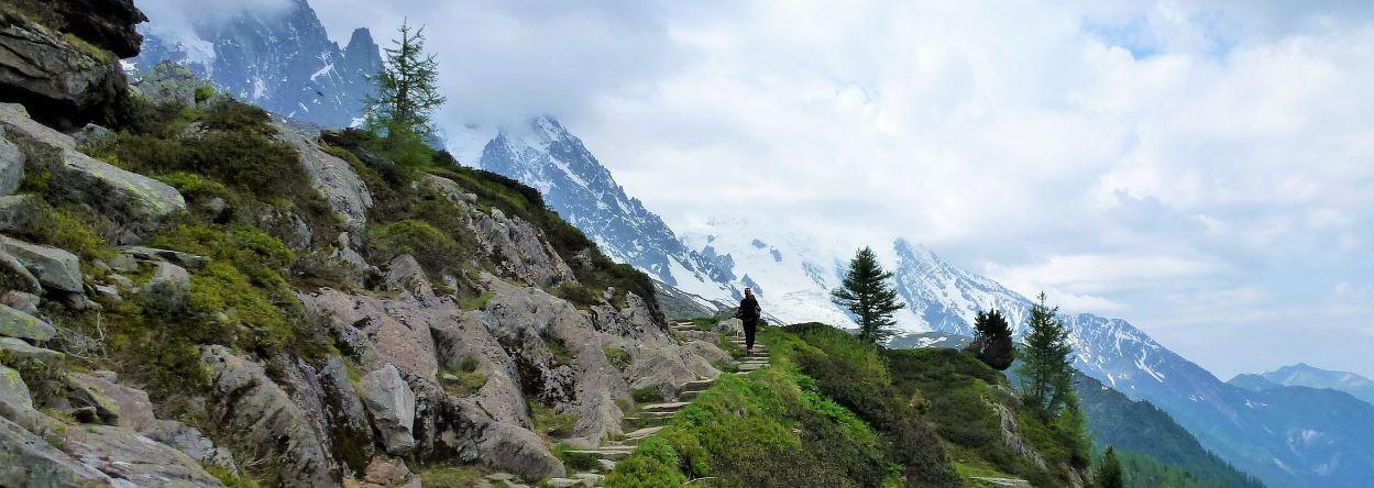 Zuid Alpen